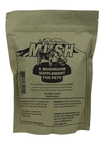 Mushroom Treats For Dogs