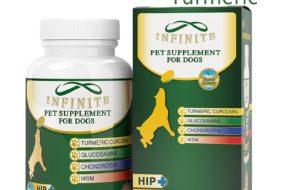 Keep Your Dog Walking With Organic Turmeric