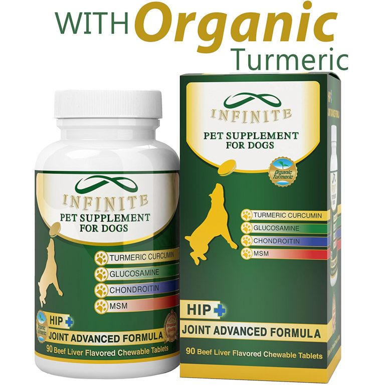 Keep Your Dog Walking With Natural Organic Turmeric