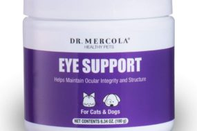 Antioxidants to Maintain Eyesight and Eye Health