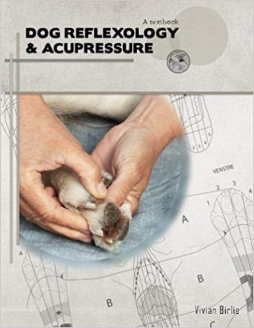 Help Your Dog With Reflexology & Acupressure