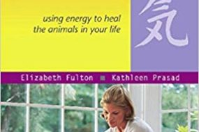 Animal Reiki: Using Energy to Heal Your Dog
