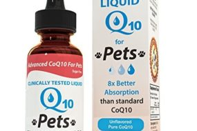 Liquid CoQ10 Can Help Restore Healthy Cell Function