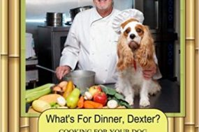 Cook for Your Dog Using the Theory of Chinese Medicine