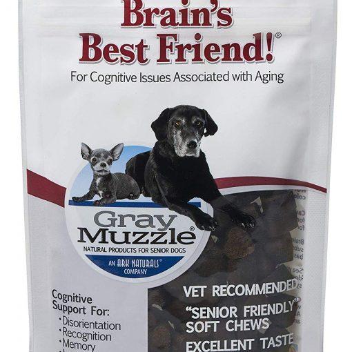 brains best friend