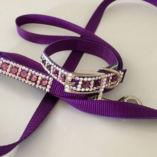 swarovski dog collar