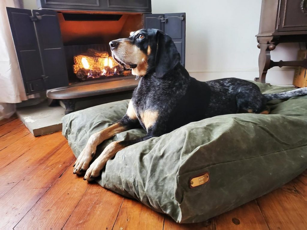 waxed canvas dog bed