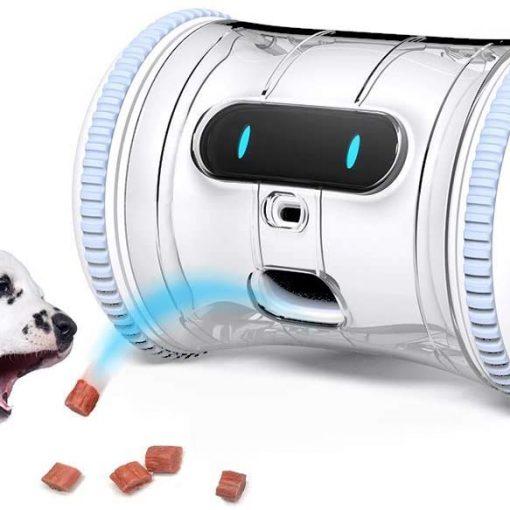 dog fitness robot