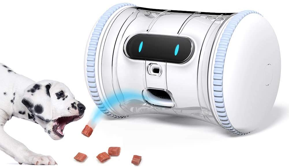 dog fitness robot