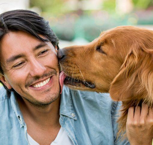 responsible dog owner